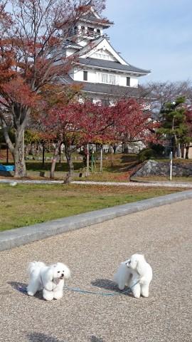 そのまま歩いて、長浜城へ